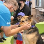 Thank you, volunteers, for making the difference in so many pets' lives.