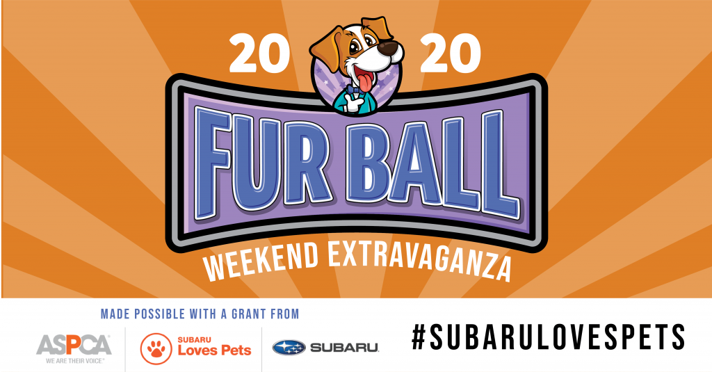 2020 Fur Ball Weekend Extravaganza