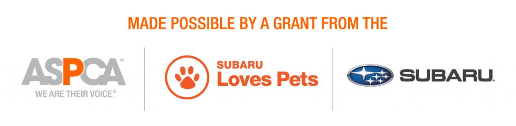 Event made possible by Subaru and the ASPCA