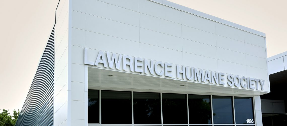 5Humane-Society-Lawrence-KS-2019-202A8829-new