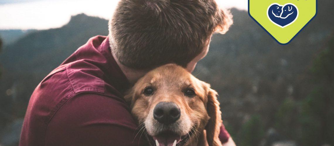 Pets Heal Hearts